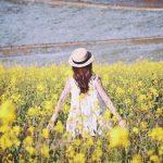 女の子につけたい春夏の花の名前15選!おすすめの名前と花言葉も紹介!